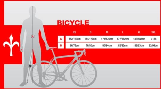 misure-telaio-bici-da-corsa-541x299
