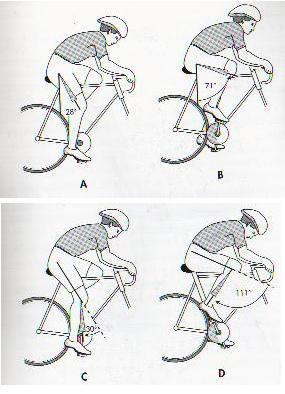 Queste figure indicano  gli angoli  preferibili, delle parti della gamba, in vari momenti della pedalata. Bisogna dire che questi sono valori medi, e dipendono tra l'altro  anche dalla lunghezza del piede, dal posizionamento delle tacchette sel pedale, dalle scarpe,  dalla lunghezza delle pedivelle, e dall'importante misura dell'arretramento sella