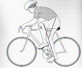 in questa illustrazione  è evidenziato il valore minimo di'angolo che deve intercorrere tra femore e tibia (35-40°) in una fase di pedalata.Un basso livello di sella,che aumenterebbe tale angolo,fa aumentare la pressione sulla rotula(freccia) e predispone alla condropatia femoro rotulea.