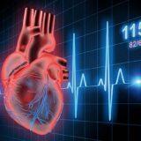 Frequenza cardiaca per dimagrire