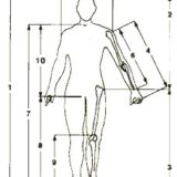 Come prendere le misure del corpo